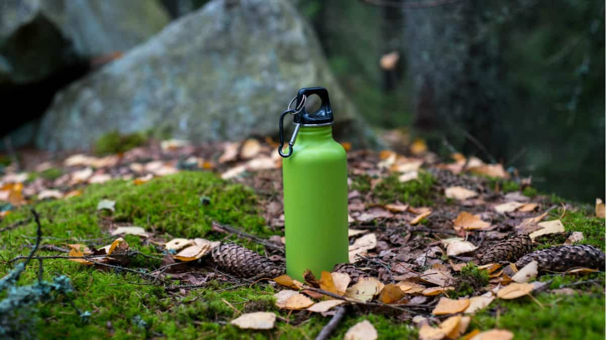 Green Hydro Flask stands on leaves