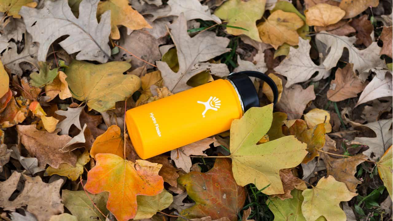 Hydro Flask bottle lies on leaves