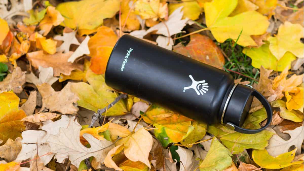 Hydro Flask bottle lying on leaves