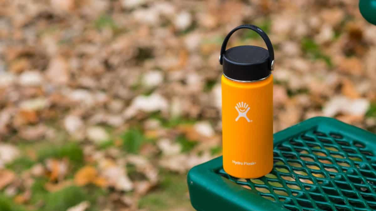 Hydro Flask bottle on a park bench