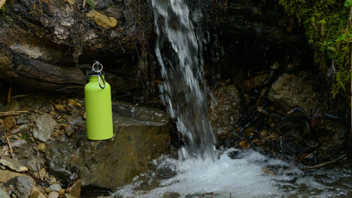 Hydro Flask bottle next to a spring