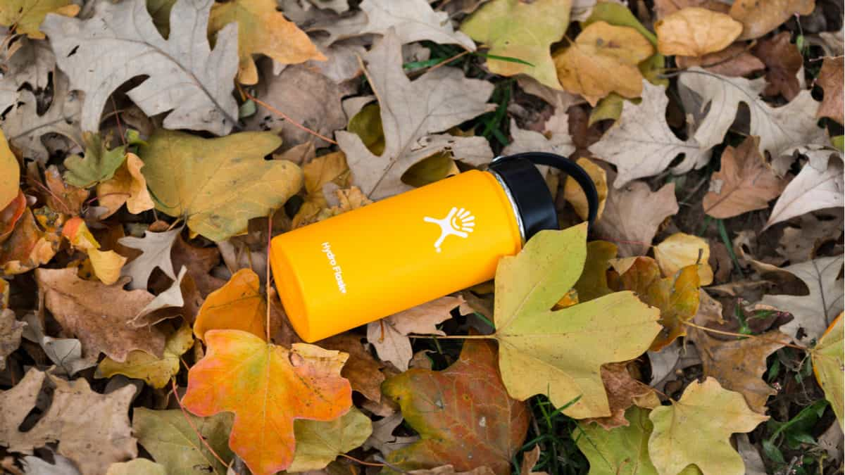Hydro Flask on a pile of leaves