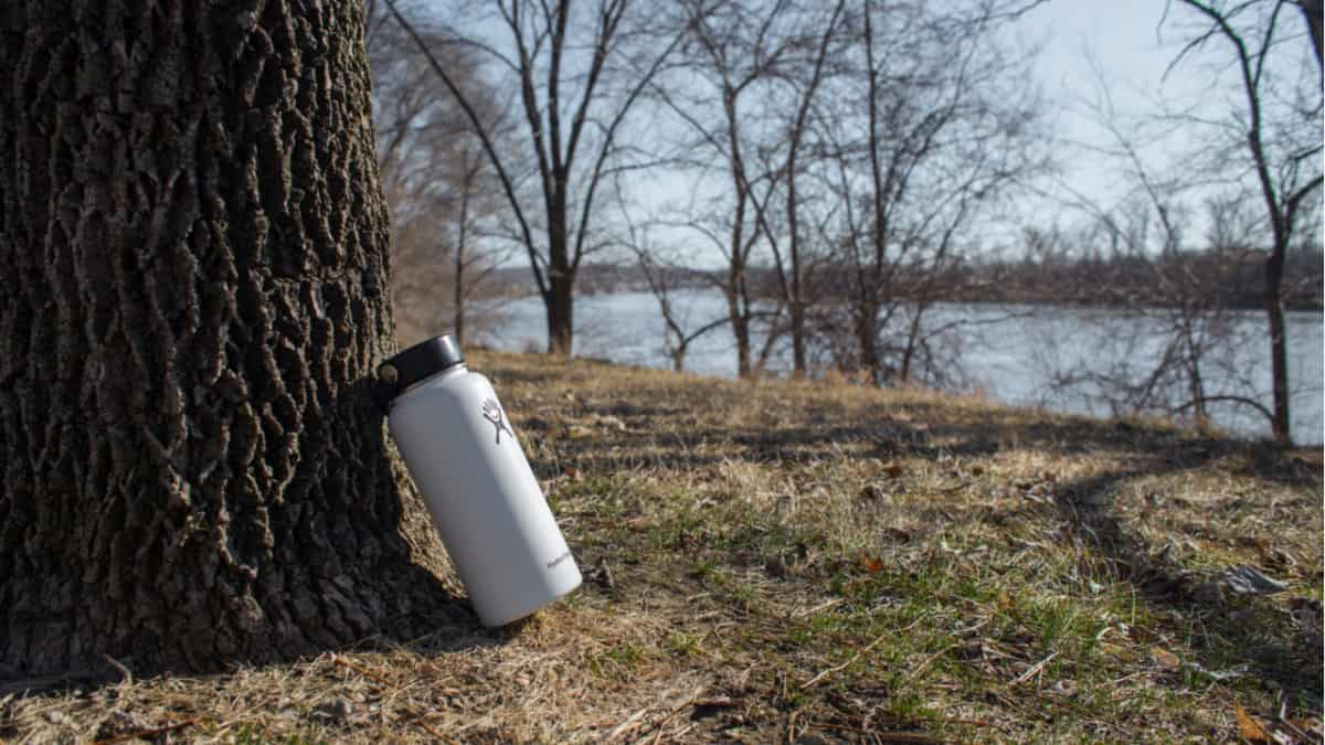 Hydro Flask bottle leaning against a tree